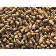 Отруби пшеничные гранулированне фото