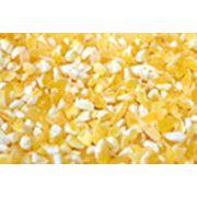 Кукурузная крупа фото