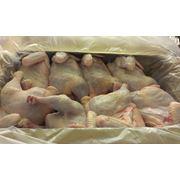 Цыплята-бройлеры охлажденные и замороженные фото