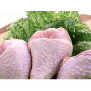 Мясо куриное фото
