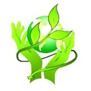 Разработка экологических нормативных документов (ЗВОС ЗЭП ПДВ ПДО ПДС КЭН и пр.) фото