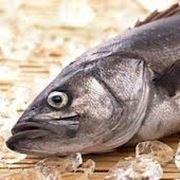 Добыча и переработка рыбы и морепродуктов фото