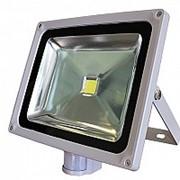 Прожектор светодиодный (светильник) СДО-2Д-50 с датчиком движения фото