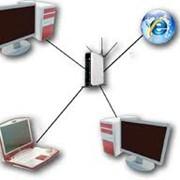 Прокладка локальных сетей, настройка сетевого оборудования, администрирование локальных сетей, ремонт, обслуживание компьютерной периферии фото