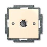 Розетка TV одиночная 2400МГц 1,5дБ слон. кость Basic 55 фото