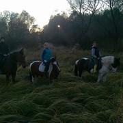 Конные прогулки, конные походы фото