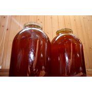 Алтайски мед; гречишный разнотравье горный таежный фото