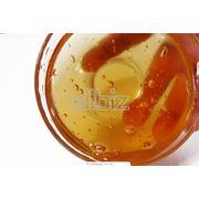 Гречишный мед относится к высокосортным сортам