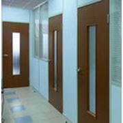Двери офисные из дерева. фото