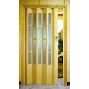 Двери гармошка фото