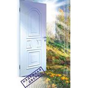 """Двери влагостойкие """"КАПЕЛЬ"""" фото"""