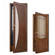 Дверь 2-х створчатая фото