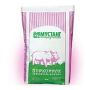 Сухое молоко (СОМ) фото