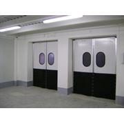 Двери распашные маятниковые фото