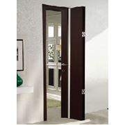 Дверь книжка Софья фото