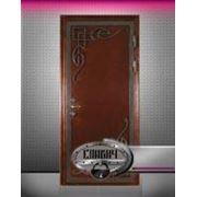 Входные двери: стальные тамбурные двери фото