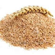 Отруби пшеничные фото