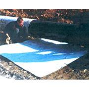 Скальный лист фото