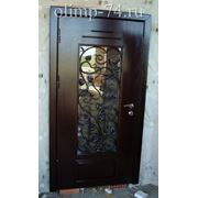 Двери с ковкой фото