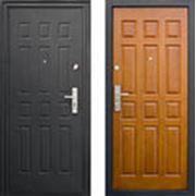 Входные железные двери фото