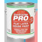 Краска фасадная Contractor Pro Flat Latex House Paint фото