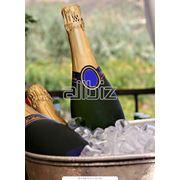 Шампанское фото