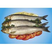 Рыбная продукция фото