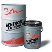 Масло моторное для газовых двигателей PETRO-CANADA SENTRON фото