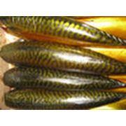 Копченая рыба фото