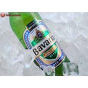 Пиво бутылочное фото