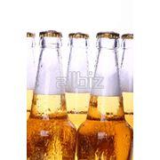 Пиво медовое фото