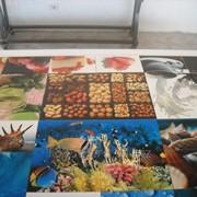 Печать изображения на керамической плитке фото