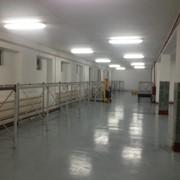 Услуги лицензированного фармацевтического склада фото