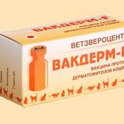 Вакцины ВАКДЕРМ-F фото