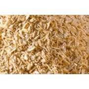 Продажа сельхозпродуктов фото