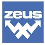 ZEUS накатые системы фото