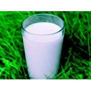 Молоко цельное натуральное