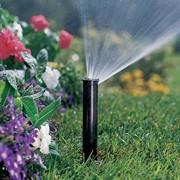 Полив цветников. Проектирование и монтаж системы полива цветников. фото
