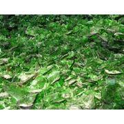 Стеклобой зеленый тарный фото