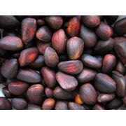 Орехи кедровые