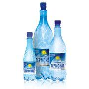 Вода минеральная лечебно-столовая газированная «Пермская» с тз «Акваториум» фото