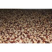 Продаем грибы белые замороженные. Экстра  первый сорт кубик в наличии от 4х тн тонн. фото