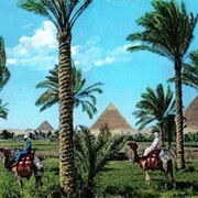 Лучший отдых в Египте фото