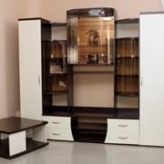 Изготовление и установка корпусной мебели фото