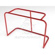 Хоккейные ворота фото