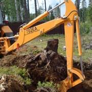 Выкорчевывание аварийных деревьев фото