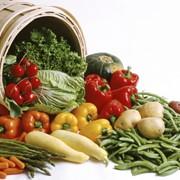 Выращивание и продажа овощей, фруктов
