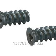 Евровинт Firmax 6,3х13, крест PZD2, сталь, оцинков. фото
