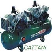 Компрессор двухцилиндровый двухмоторный с рессивером 100 л c осушителем (320 л/мин) фото