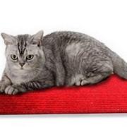 Нагревательный коврик для кошек 65х110 см фото